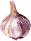 Garlic Level
